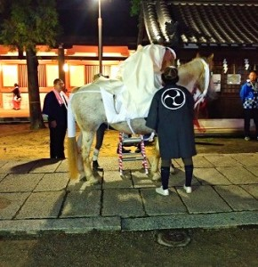 Festival-man-and-festival-white-horse