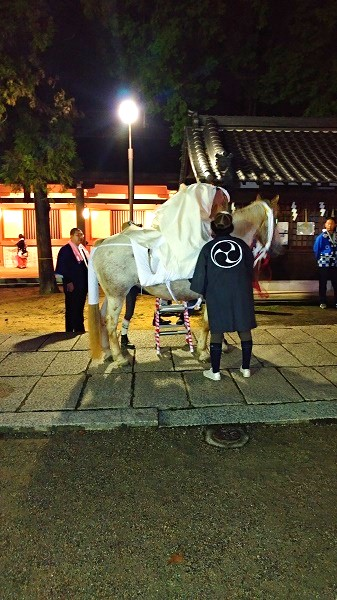 Festival-man-and-festival-white-horse