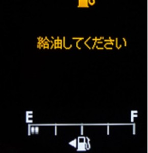 IMG-4091