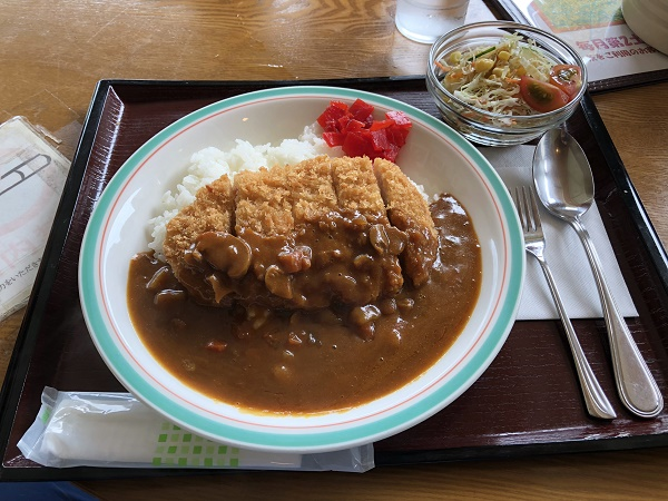 Sunflower-curry